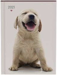 Agenda 2021 my favourite friends dogs
