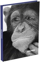 Schoolagenda  2021-2022 Monkey 125x175mm