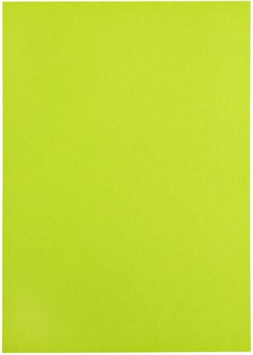 Kopieerpapier Papicolor A4 100gr 12vel appelgroen-3