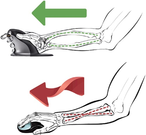 Ergonomische Muis Fellowes Penguin draadloos large-3