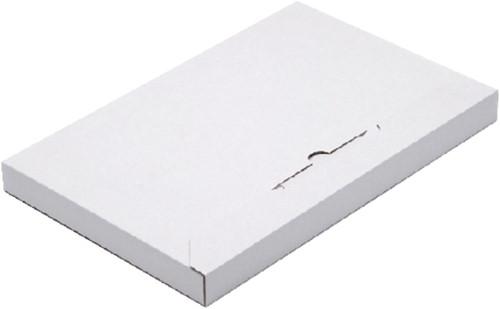 Brievenbusbox Budget A5 230x160x29mm karton wit