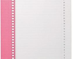 Ruiterstrook Elba Nr 0 297x6mm verticaal roze