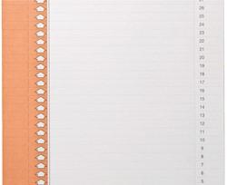 Ruiterstrook Elba Nr 9 157x7mm lateraal oranje