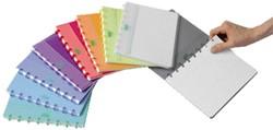 Schrift Adoc Colorlines A5 ruit 5x5mm 144blz 90gr PP assorti