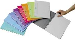 Schrift Adoc pap-ex color A4 ruit 5mm 144blz assorti