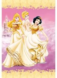 Dagboek Disney prinsess