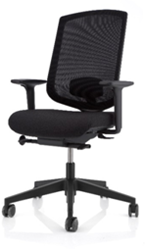 Delo Ergo chair 1+