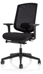 Delo Ergo chair 1+